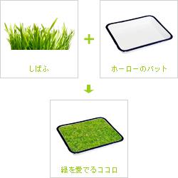 しばふ(プチプラート)+ホーロー(野田琺瑯)のバット=緑を愛でるココロ(おへやで芝生)